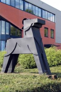 Paard-Jack de Rijk-1