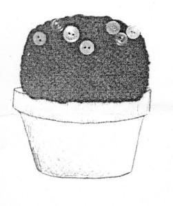 x Afbeelding 1 -zie tekst brief - bolcactus met knoopjes
