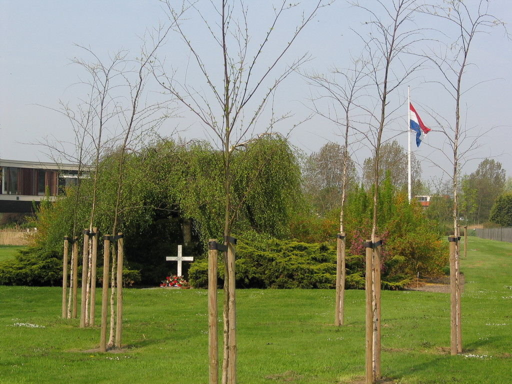 Koop Peters-kruis in tuin SC Johnson Europlant